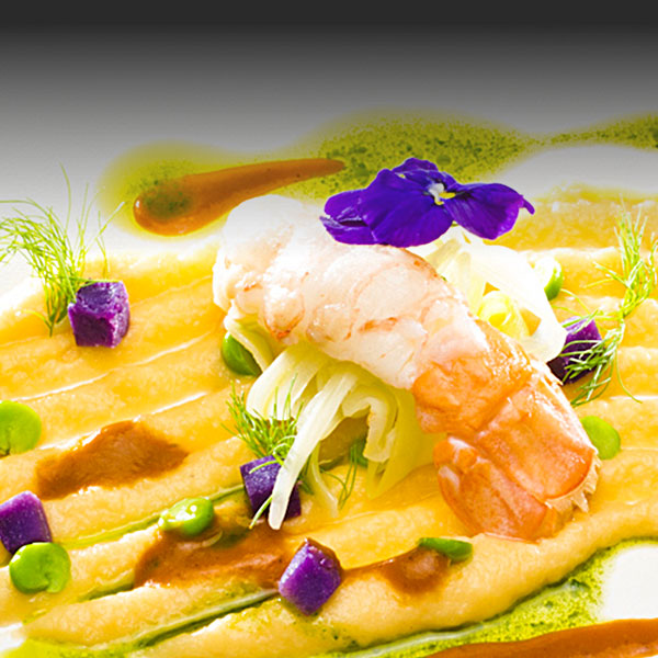 Sea bream fillet with prawns